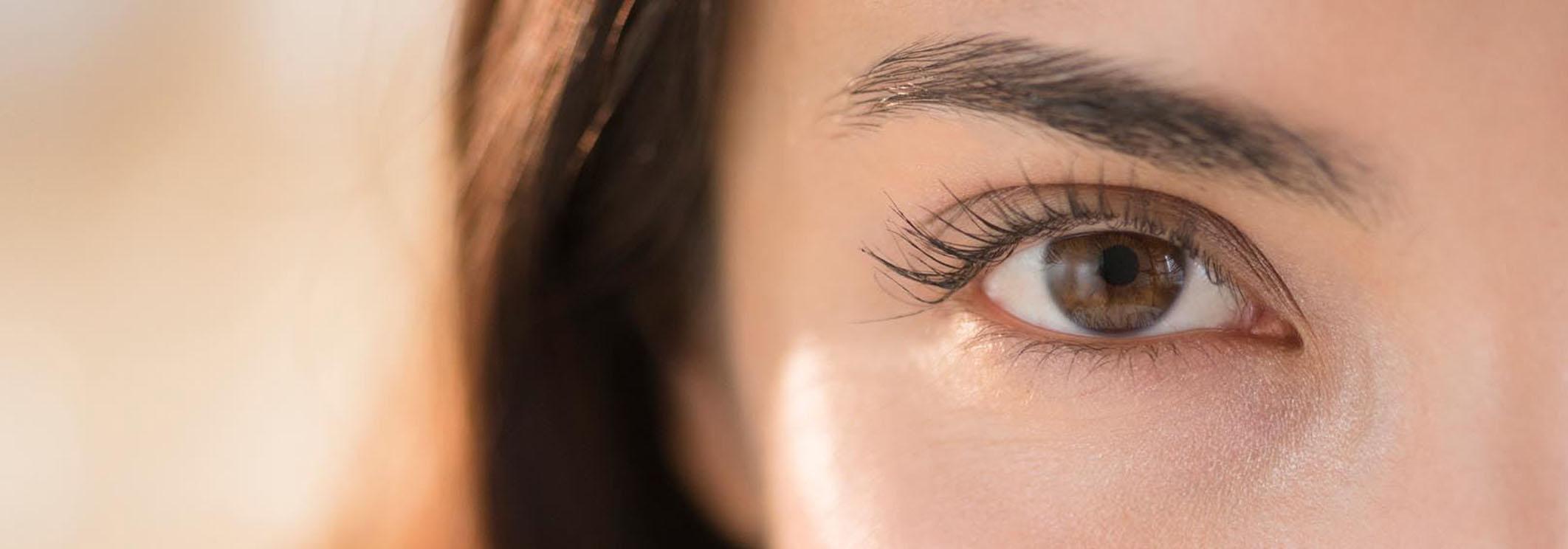 la-greffe-sourcils